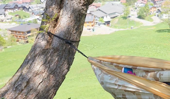 Aufhängung am dicken Baum