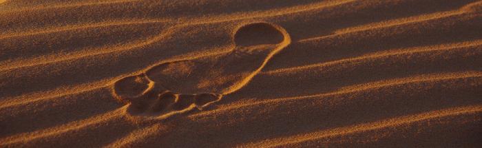 In der Wüste hinterlässt man nur Spuren im Sand und nimmt nur Eindrücke mit.