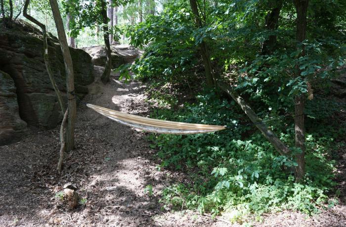 Im Wald gespannt aber leer