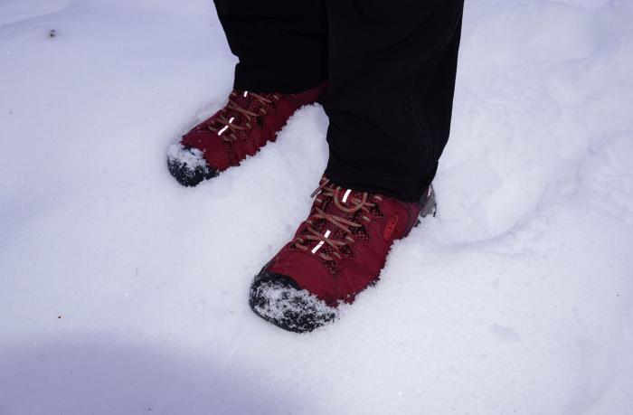 Im Schnee mit Reflektion vorne