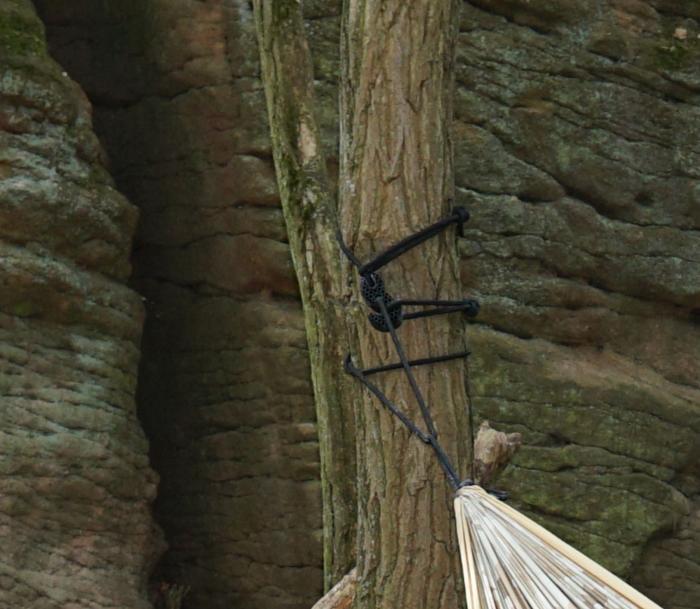 Befestigung am Baum