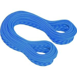 Mammut Infinity Dry Duodess 9.5 Kletterseil Blau
