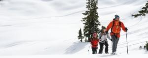 Top 5 Features: Schneeschuhe